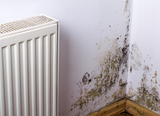 Welsh Government releases new plan to end misery of cold homes